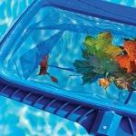 kislik-havuz-bakimi