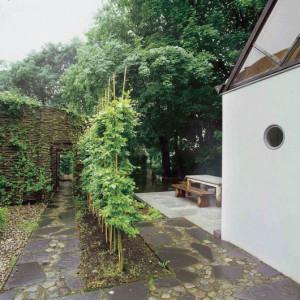 Sauna-evi-9